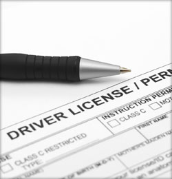 Provisional Licence Application